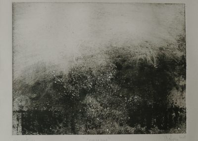 DELEPINE 2008- Campagne- Monotype